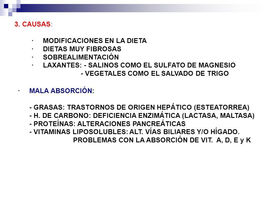 3. CAUSAS: · MODIFICACIONES EN LA DIETA · DIETAS MUY FIBROSAS · SOBREALIMENTACIÓN · LAXANTES: - SALINOS COMO EL SULFATO DE MAGNESIO - VEGETALES COMO E