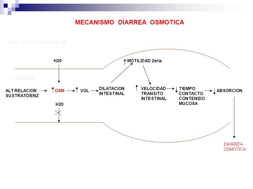 ALT RELACION SUSTRATO/ENZ OSM H20 VOL DILATACION INTESTINAL MOTILIDAD 2aria. VELOCIDAD TRANSITO INTESTINAL TIEMPO CONTACTO CONTENIDO MUCOSA ABSORCION