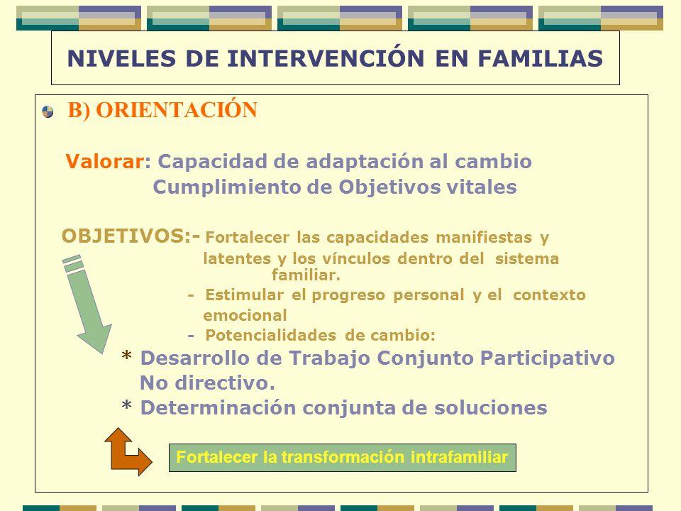 NIVELES DE INTERVENCIÓN EN FAMILIAS B) ORIENTACIÓN Valorar: Capacidad de adaptación al cambio Cumplimiento de Objetivos vitales OBJETIVOS:- Fortalecer