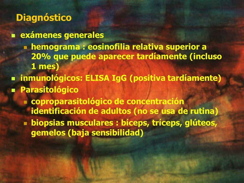 Diagnóstico exámenes generales hemograma : eosinofilia relativa superior a 20% que puede aparecer tardíamente (incluso 1 mes) inmunológicos: ELISA IgG (positiva tardíamente) Parasitológico coproparasitológico de concentración identificación de adultos (no se usa de rutina) biopsias musculares : bíceps, tríceps, glúteos, gemelos (baja sensibilidad)