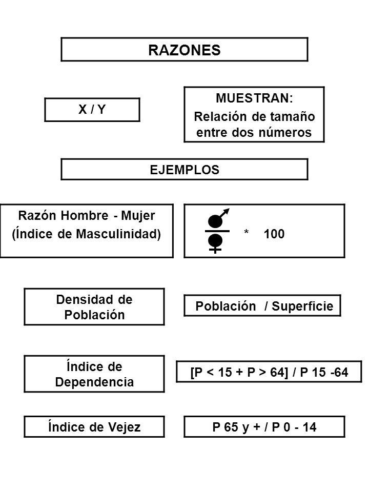 RAZONES X / Y MUESTRAN: Relación de tamaño entre dos números EJEMPLOS Razón Hombre - Mujer (Índice de Masculinidad)* 100 Densidad de Población Poblaci