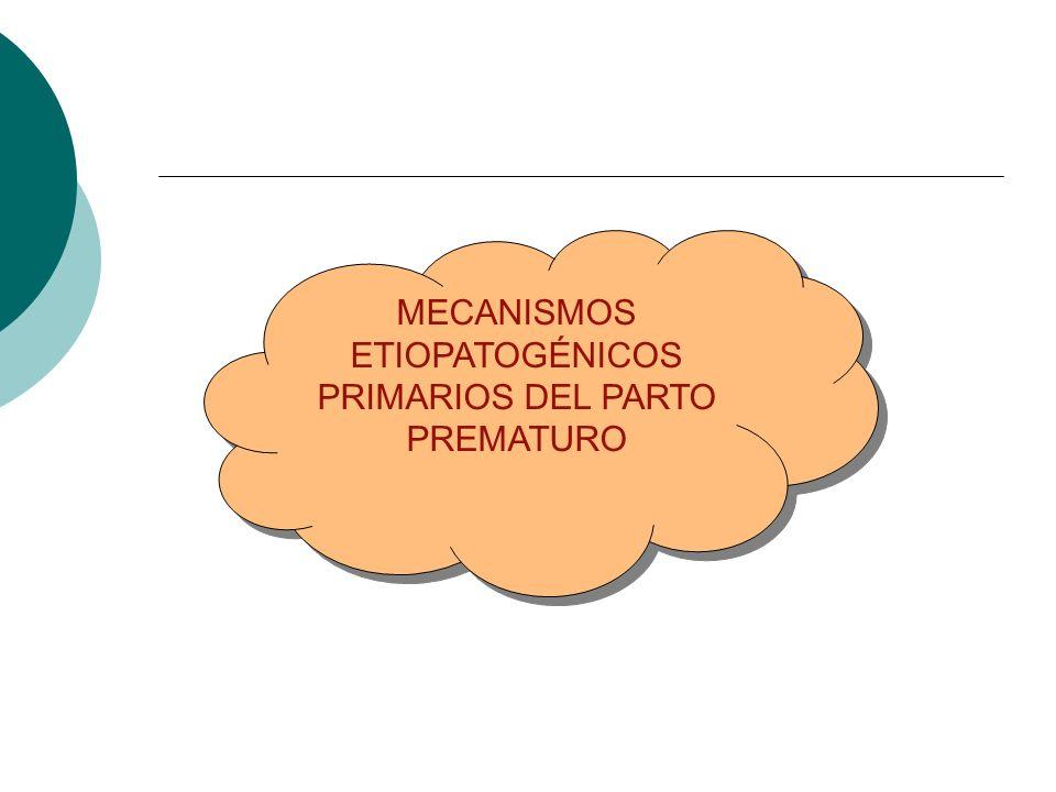 MECANISMOS ETIOPATOGÉNICOS PRIMARIOS DEL PARTO PREMATURO