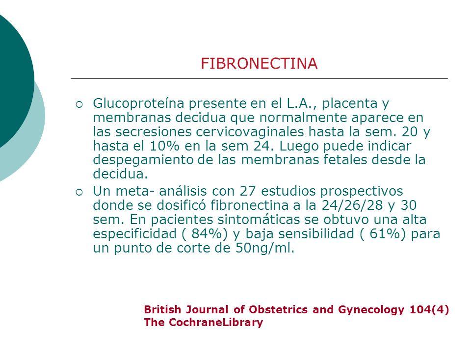 Glucoproteína presente en el L.A., placenta y membranas decidua que normalmente aparece en las secresiones cervicovaginales hasta la sem. 20 y hasta e