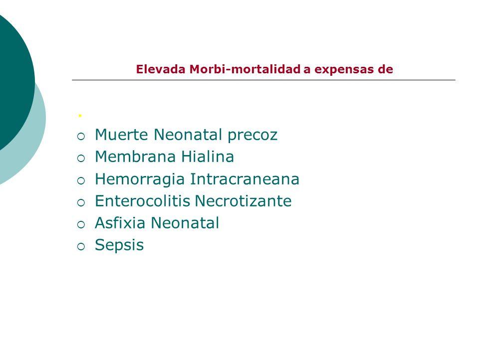 Elevada Morbi-mortalidad a expensas de. Muerte Neonatal precoz Membrana Hialina Hemorragia Intracraneana Enterocolitis Necrotizante Asfixia Neonatal S