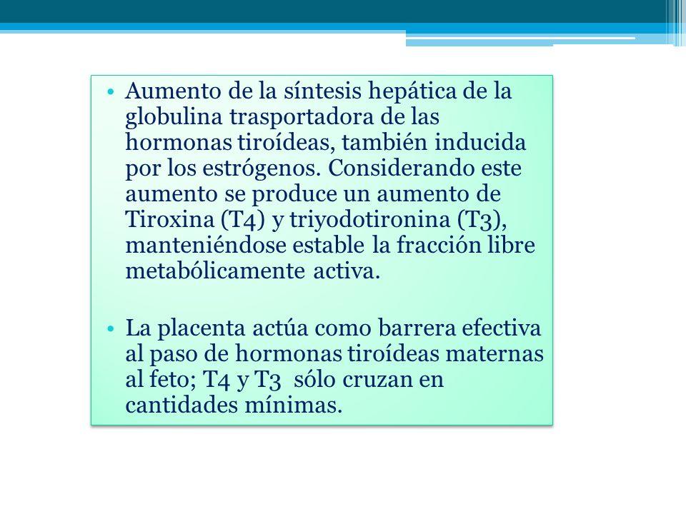 Aumento de la síntesis hepática de la globulina trasportadora de las hormonas tiroídeas, también inducida por los estrógenos. Considerando este aument