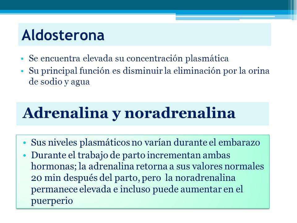 Aldosterona Adrenalina y noradrenalina Se encuentra elevada su concentración plasmática Su principal función es disminuir la eliminación por la orina