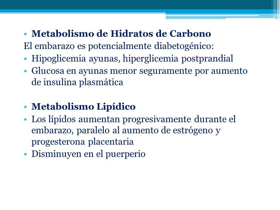 Metabolismo de Hidratos de Carbono El embarazo es potencialmente diabetogénico: Hipoglicemia ayunas, hiperglicemia postprandial Glucosa en ayunas meno