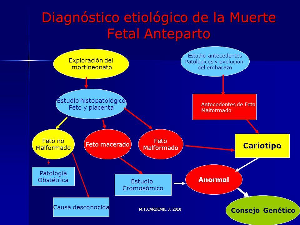 M.T.CARDEMIL J.-2010 Diagnóstico etiológico de la Muerte Fetal Anteparto Exploración del mortineonato Estudio antecedentes Patológicos y evolución del