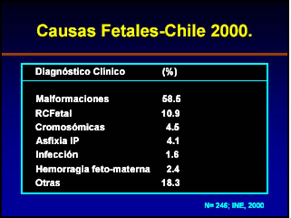 M.T.CARDEMIL J.-2010 Evolución anatómica del Feto Muerto y Retenido Licuefacción o disolución: hasta las 8 semanas.