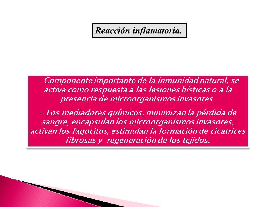 - Componente importante de la inmunidad natural, se activa como respuesta a las lesiones hísticas o a la presencia de microorganismos invasores. - Los