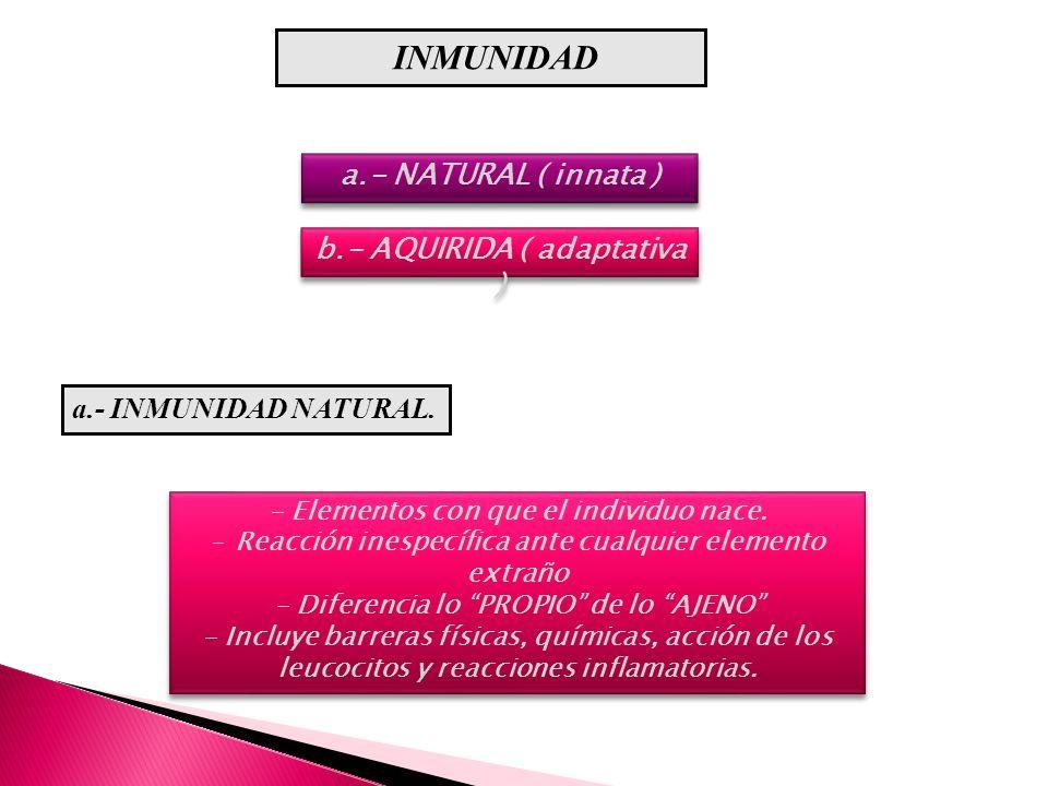 a.- NATURAL ( innata ) - Elementos con que el individuo nace. - Reacción inespecífica ante cualquier elemento extraño - Diferencia lo PROPIO de lo AJE