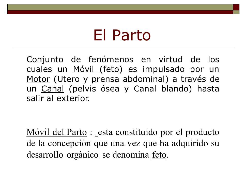Mecanismo General del Parto v Canal Óseo y Blando. v Motor Uterino v Móvil fetal