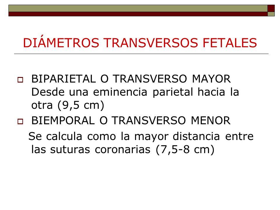 DIÁMETROS TRANSVERSOS FETALES BIPARIETAL O TRANSVERSO MAYOR Desde una eminencia parietal hacia la otra (9,5 cm) BIEMPORAL O TRANSVERSO MENOR Se calcul