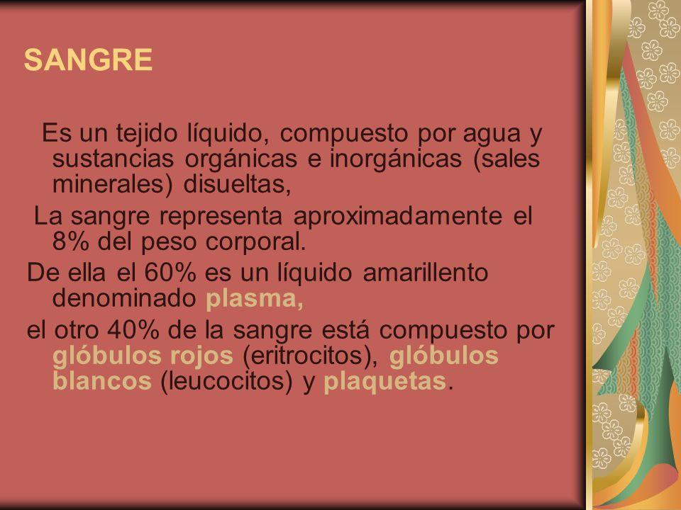 SANGRE Es un tejido líquido, compuesto por agua y sustancias orgánicas e inorgánicas (sales minerales) disueltas, La sangre representa aproximadamente