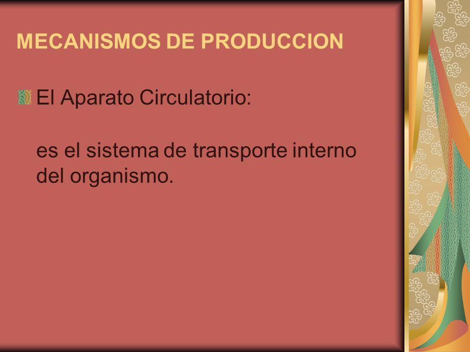 MECANISMOS DE PRODUCCION El Aparato Circulatorio: es el sistema de transporte interno del organismo.