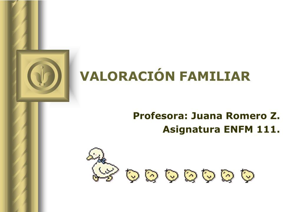 VALORACIÓN FAMILIAR Profesora: Juana Romero Z. Asignatura ENFM 111.