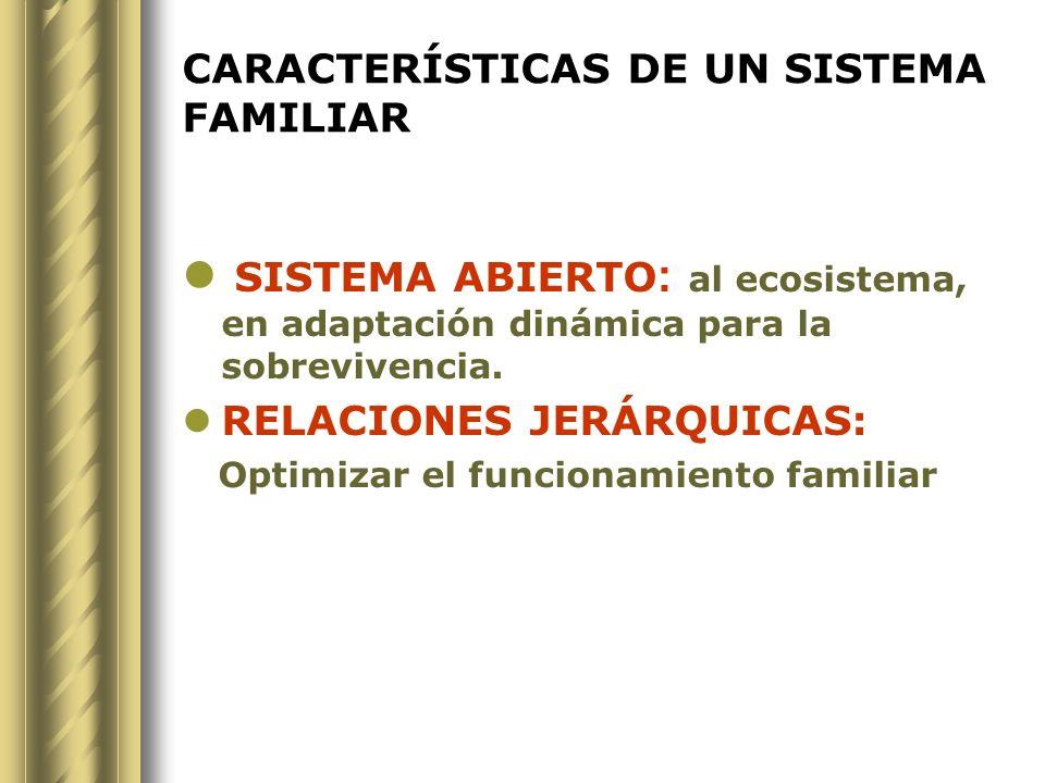 CARACTERÍSTICAS DE UN SISTEMA FAMILIAR SISTEMA ABIERTO : al ecosistema, en adaptación dinámica para la sobrevivencia. RELACIONES JERÁRQUICAS: Optimiza