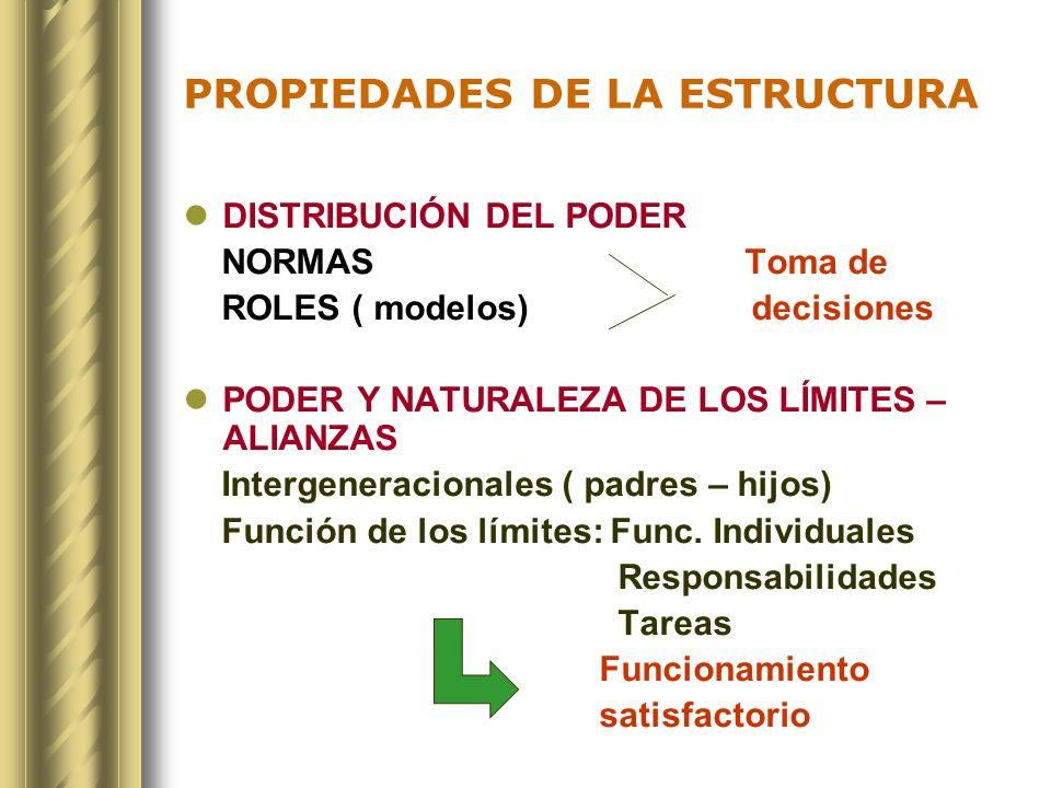PROPIEDADES DE LA ESTRUCTURA DISTRIBUCIÓN DEL PODER NORMAS Toma de ROLES ( modelos) decisiones PODER Y NATURALEZA DE LOS LÍMITES – ALIANZAS Intergener