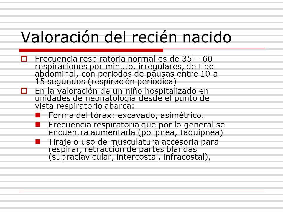 Valoración del recién nacido Frecuencia respiratoria normal es de 35 – 60 respiraciones por minuto, irregulares, de tipo abdominal, con periodos de pa