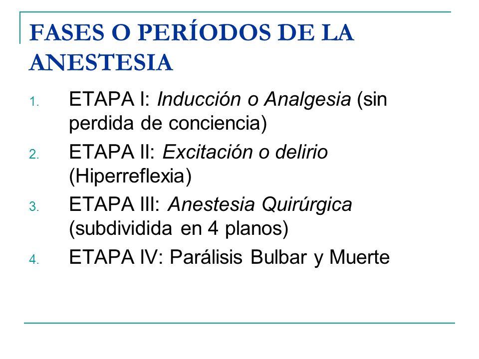 FASES O PERÍODOS DE LA ANESTESIA 1. ETAPA I: Inducción o Analgesia (sin perdida de conciencia) 2. ETAPA II: Excitación o delirio (Hiperreflexia) 3. ET