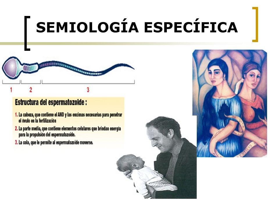 SEMIOLOGÍA ESPECÍFICA