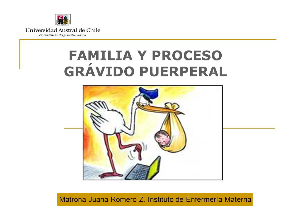 FAMILIA Y PROCESO GRÁVIDO PUERPERAL Matrona Juana Romero Z. Instituto de Enfermería Materna