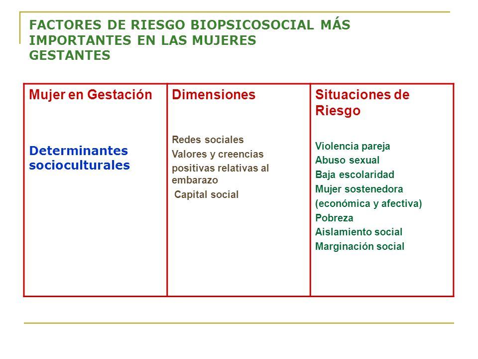 FACTORES DE RIESGO BIOPSICOSOCIAL MÁS IMPORTANTES EN LAS MUJERES GESTANTES Mujer en Gestación Determinantes socioculturales Dimensiones Redes sociales
