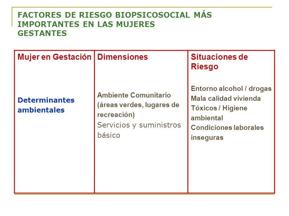 FACTORES DE RIESGO BIOPSICOSOCIAL MÁS IMPORTANTES EN LAS MUJERES GESTANTES Mujer en Gestación Determinantes ambientales Dimensiones Ambiente Comunitar
