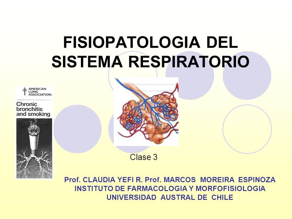 FISIOPATOLOGIA DEL SISTEMA RESPIRATORIO Prof. CLAUDIA YEFI R. Prof. MARCOS MOREIRA ESPINOZA INSTITUTO DE FARMACOLOGIA Y MORFOFISIOLOGIA UNIVERSIDAD AU