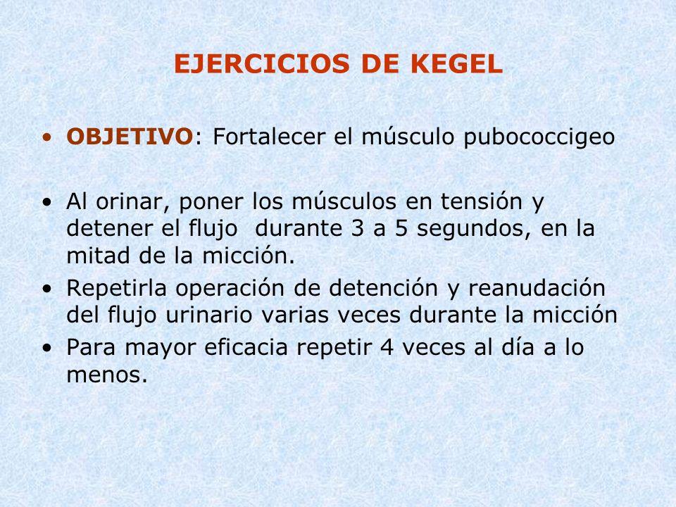 EJERCICIOS DE KEGEL OBJETIVO: Fortalecer el músculo pubococcigeo Al orinar, poner los músculos en tensión y detener el flujo durante 3 a 5 segundos, e