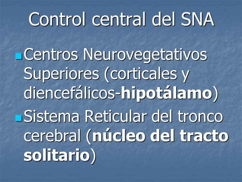 Control central del SNA Centros Neurovegetativos Superiores (corticales y diencefálicos-hipotálamo) Centros Neurovegetativos Superiores (corticales y
