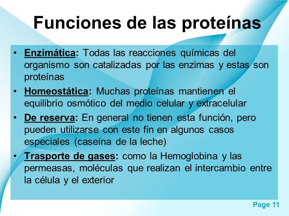 Page 11 Funciones de las proteínas Enzimática: Todas las reacciones químicas del organismo son catalizadas por las enzimas y estas son proteínas Homeo