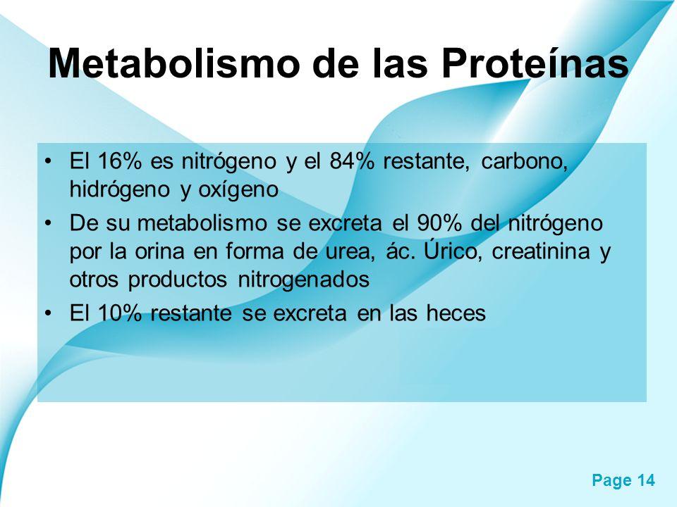 Page 14 Metabolismo de las Proteínas El 16% es nitrógeno y el 84% restante, carbono, hidrógeno y oxígeno De su metabolismo se excreta el 90% del nitró