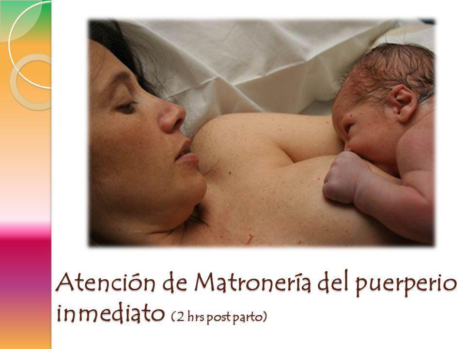 Eventos importantes de instalación u ocurrencia en el puerperio inmediato LACTANCIA VINCULO EXTRAUTERINO MADRE-HIJ@-PADRE INICIO DE LA REGRESIÓN DE LAS MODIFICACIONES ANATOMO- FISIOLOGICAS DE LA GESTACIÓN **Hemodinamicos Psicosociales Biológicos