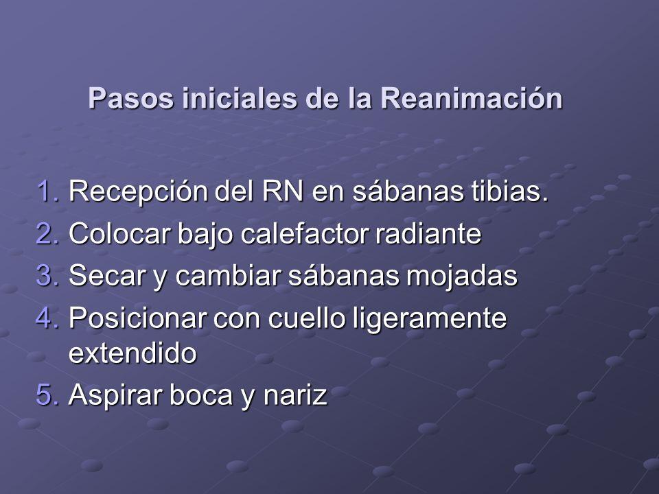 Pasos iniciales de la Reanimación 1.Recepción del RN en sábanas tibias. 2.Colocar bajo calefactor radiante 3.Secar y cambiar sábanas mojadas 4.Posicio