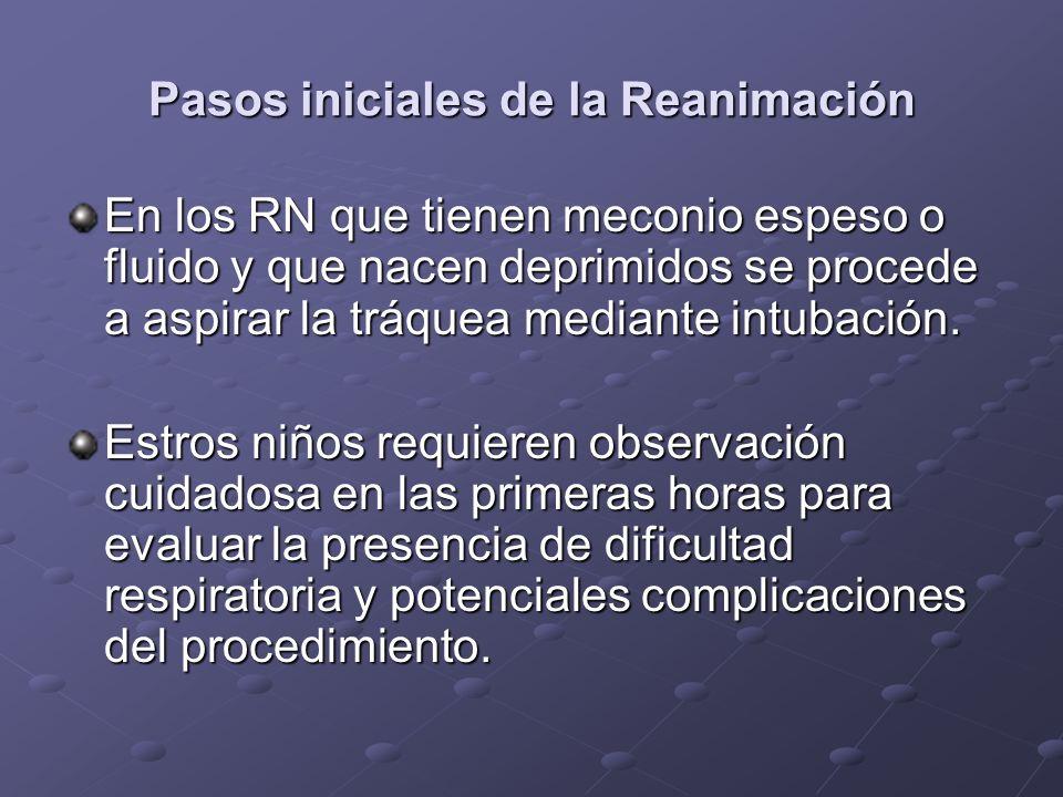 Pasos iniciales de la Reanimación En los RN que tienen meconio espeso o fluido y que nacen deprimidos se procede a aspirar la tráquea mediante intubac