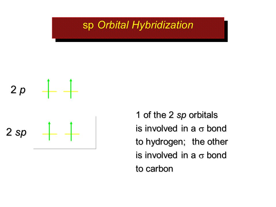 sp Orbital Hybridization 1 of the 2 sp orbitals is involved in a bond to hydrogen; the other is involved in a bond to carbon 2 sp 2 p