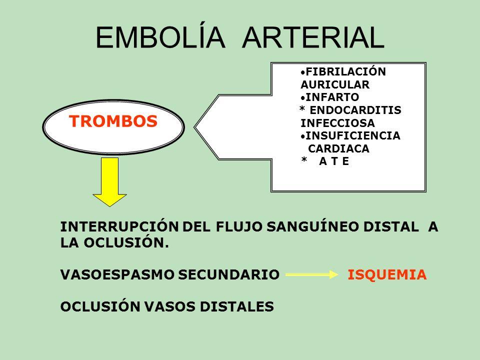 EMBOLÍA ARTERIAL SECUELAS * TAMAÑO DEL TROMBO * ORGANOS AFECTADOS * ESTADO DE LA CIRCULACIÓN COLATERAL TRATAMIENTO EMBOLECTOMÍA ( antes de 6 a 10 horas) ANTICOAGULANTE TROMBOLÍTICOS ( Estreptocinasa) PAPAVERINA ( dolor) POSICIÓN