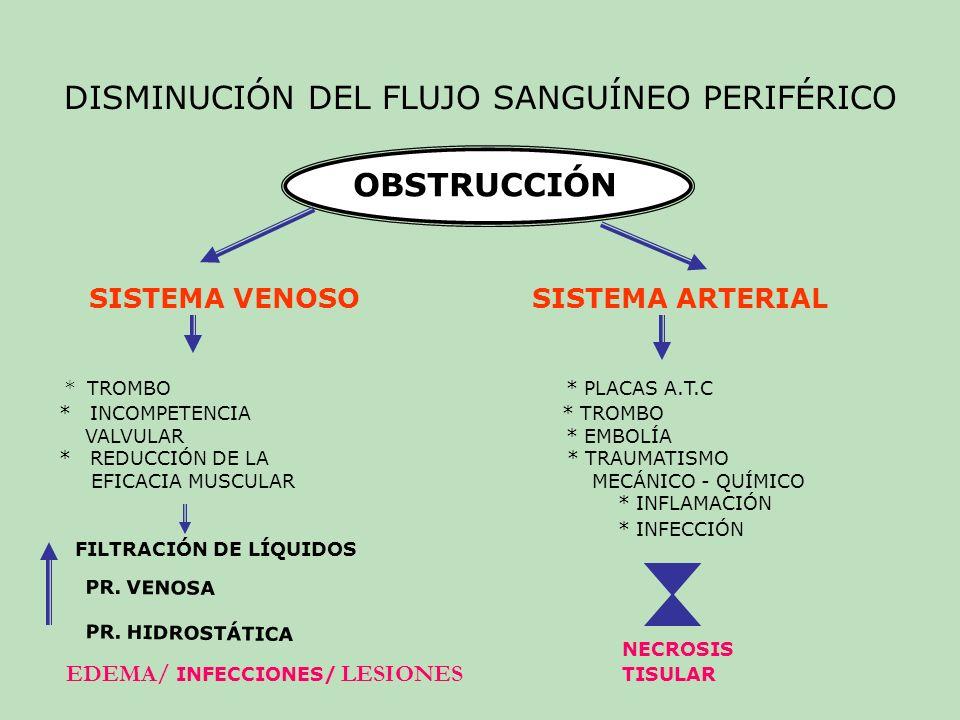 FACTORES DE RIESGO TABACO : NICOTINA VASOCONTRICCIÓN VENOSA ESPASMOS ARTERIALES CIRCULACIÓN DE EXTREMIDADES C O : TRANSPORTE DE OXIGENO HTA: TEJIDO ELÁSTICO COLÁGENO FIBROSO Distensibilidad de las paredes arteriales Resistencia al flujo sanguíneo HIPERLIPIDEMIA : PLACAS ATE.