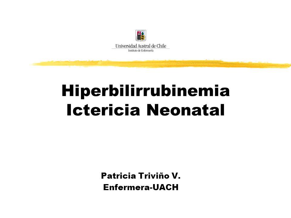 Hiperbilirrubinemia Ictericia Neonatal Patricia Triviño V. Enfermera-UACH