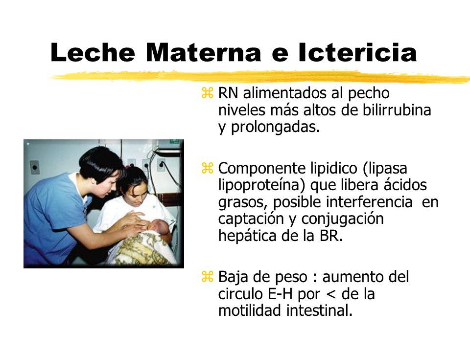 Leche Materna e Ictericia z RN alimentados al pecho niveles más altos de bilirrubina y prolongadas. z Componente lipidico (lipasa lipoproteína) que li