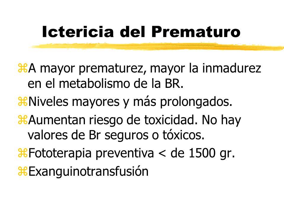 Ictericia del Prematuro zA mayor prematurez, mayor la inmadurez en el metabolismo de la BR. zNiveles mayores y más prolongados. zAumentan riesgo de to