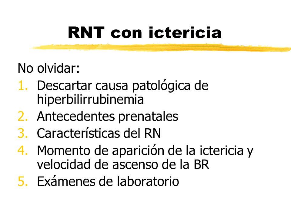 RNT con ictericia No olvidar: 1.Descartar causa patológica de hiperbilirrubinemia 2.Antecedentes prenatales 3.Características del RN 4.Momento de apar