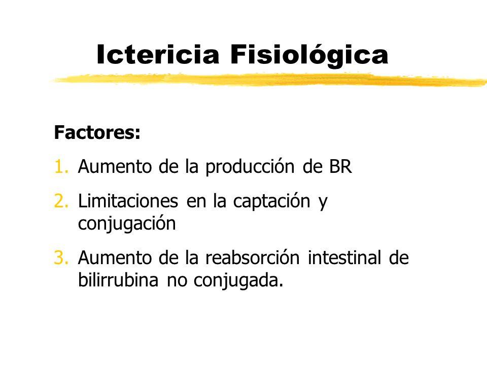 Ictericia Fisiológica Factores: 1.Aumento de la producción de BR 2.Limitaciones en la captación y conjugación 3.Aumento de la reabsorción intestinal d