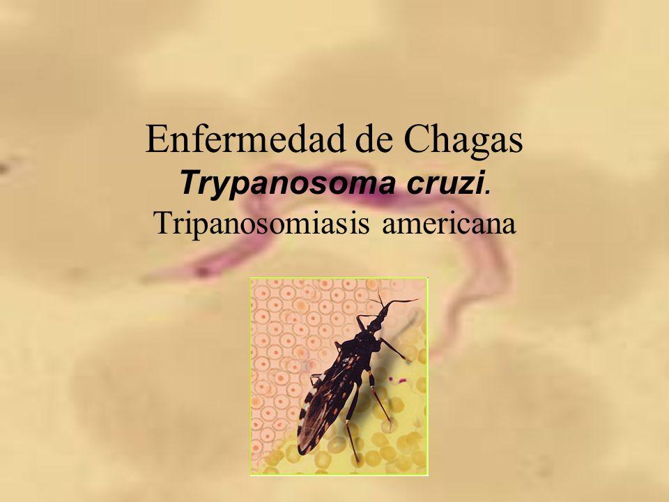 Mecanismo de daño Enfermedad de Chagas congénita.–Prematurez.
