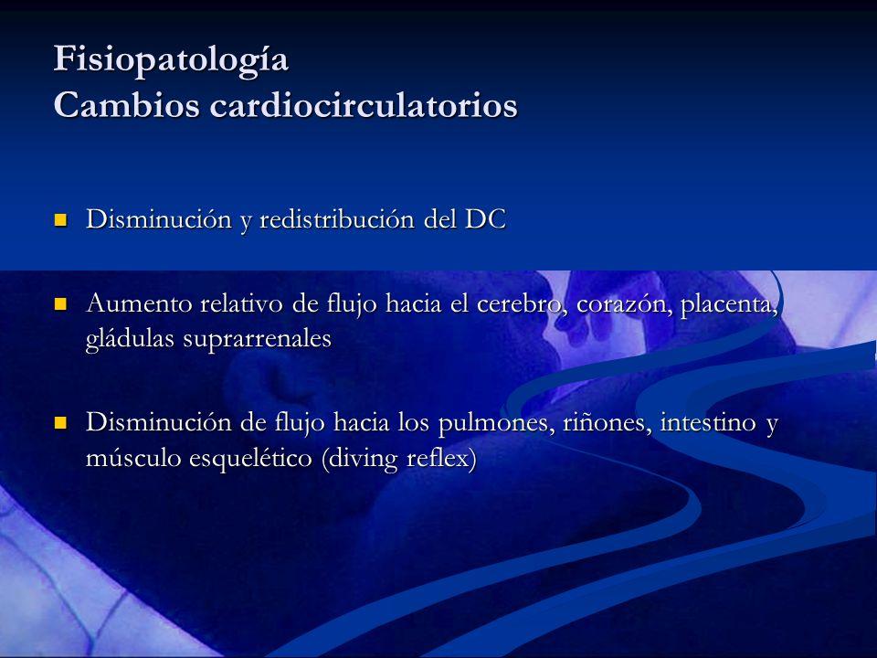 Fisiopatología Cambios cardiocirculatorios Disminución y redistribución del DC Disminución y redistribución del DC Aumento relativo de flujo hacia el