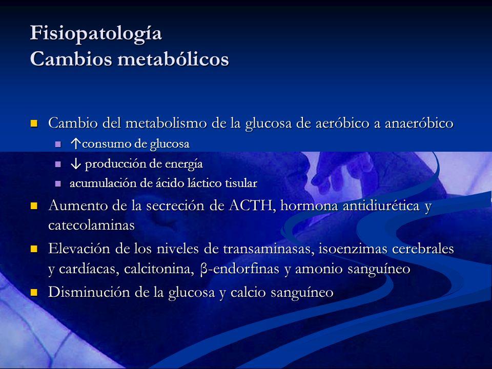 Fisiopatología Cambios metabólicos Cambio del metabolismo de la glucosa de aeróbico a anaeróbico Cambio del metabolismo de la glucosa de aeróbico a an