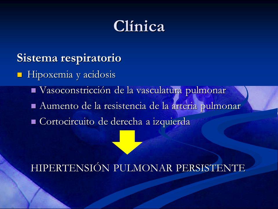 Clínica Sistema respiratorio Hipoxemia y acidosis Hipoxemia y acidosis Vasoconstricción de la vasculatura pulmonar Vasoconstricción de la vasculatura