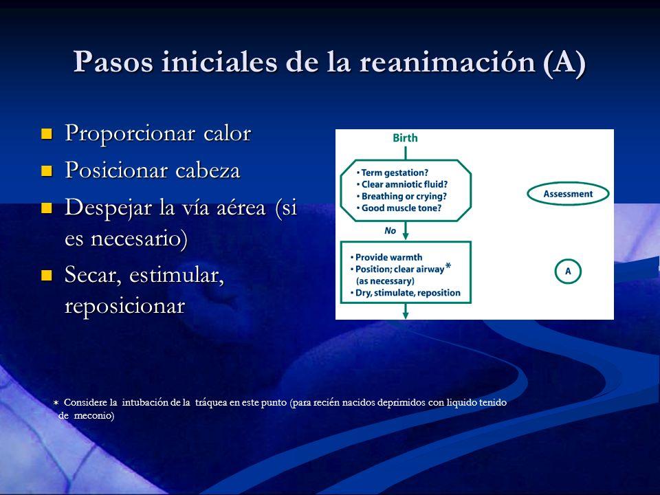 Pasos iniciales de la reanimación (A) Proporcionar calor Proporcionar calor Posicionar cabeza Posicionar cabeza Despejar la vía aérea (si es necesario