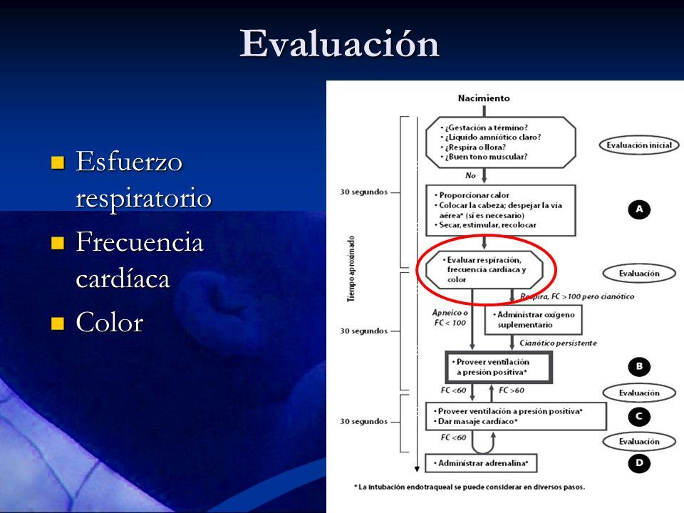Evaluación Esfuerzo respiratorio Esfuerzo respiratorio Frecuencia cardíaca Frecuencia cardíaca Color Color
